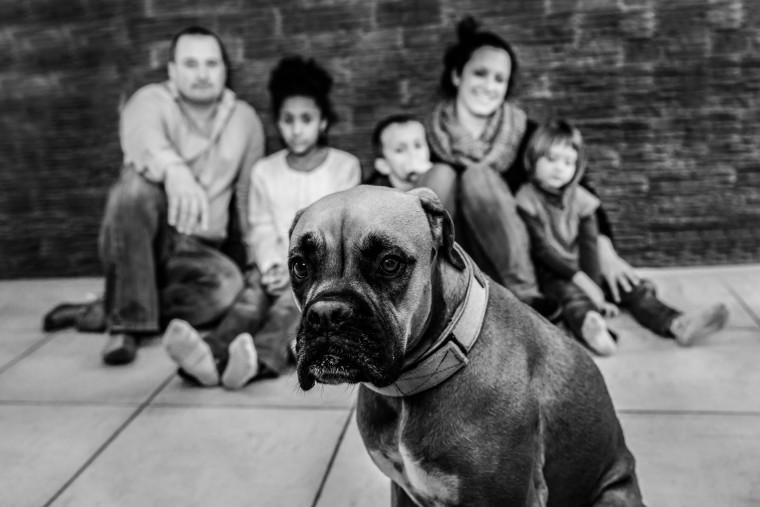 photographe-professionnel-carcassonne-famille-3