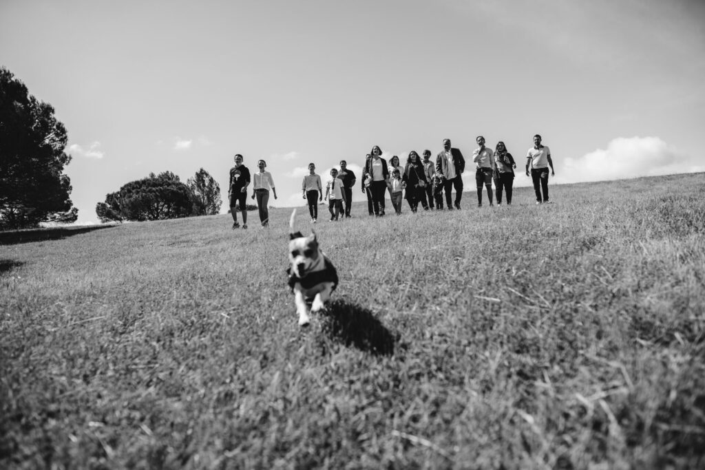 photographe-carcassonne-séance-photo-famille-1