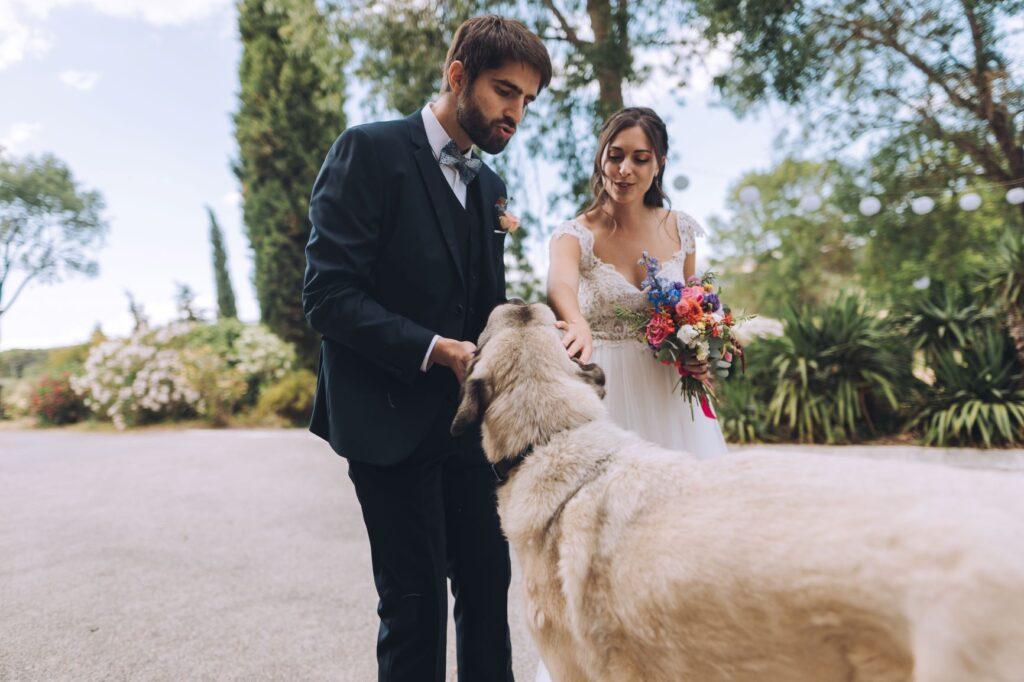 photographe-carcassonne-mariage-franco-américain-43