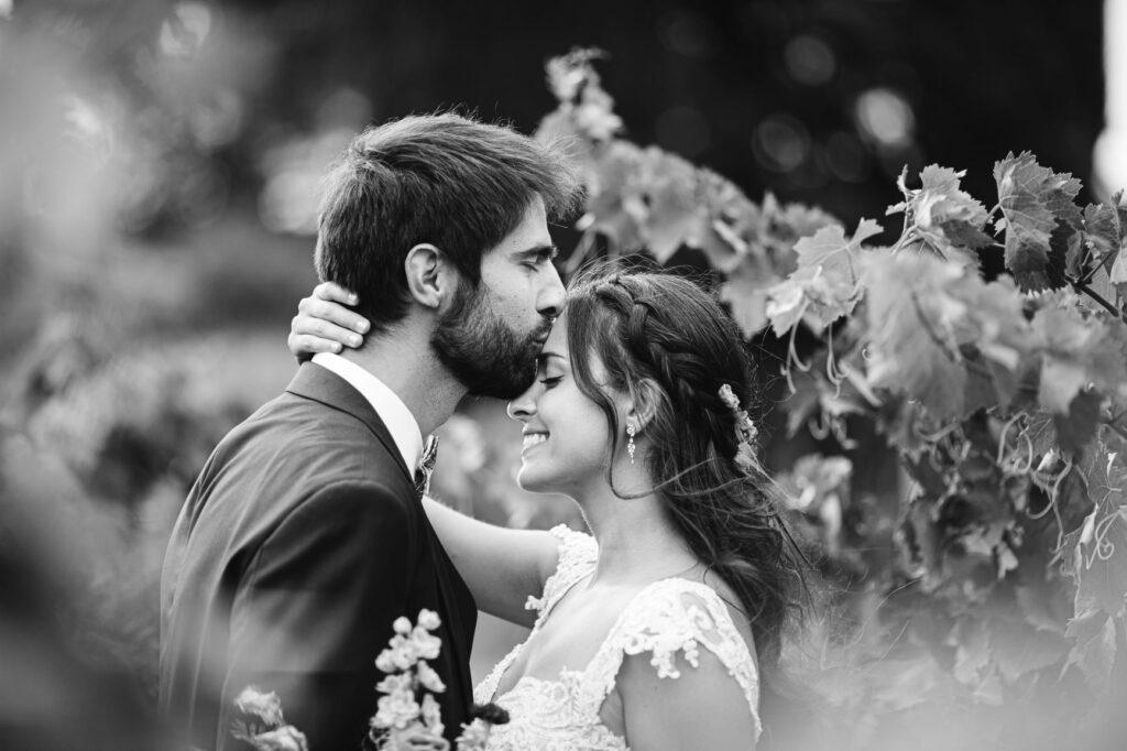 photographe-carcassonne-mariage-franco-américain-65